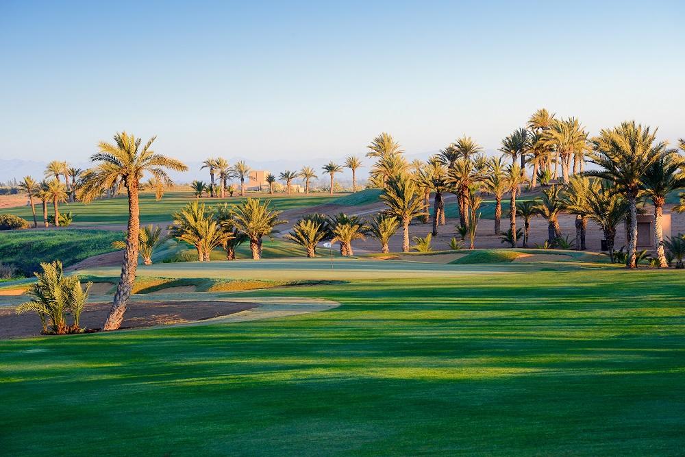 La lignée de palmiers au  golf d'Assoufid.