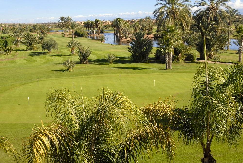 Le fairway et les palmiers du golf de la Palmeraie.