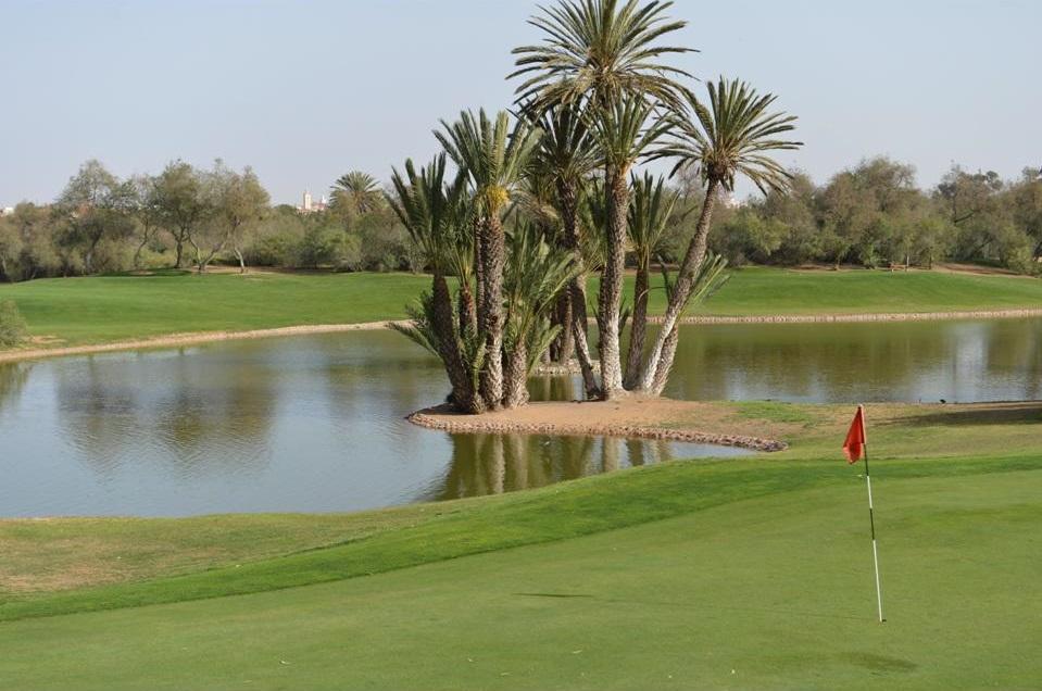 Les palmiers du golf des dunes.