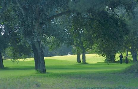 La forêt du golf Royal Dar Es Salam.