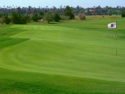Le green et le drapeau du golf de Palmeraie.