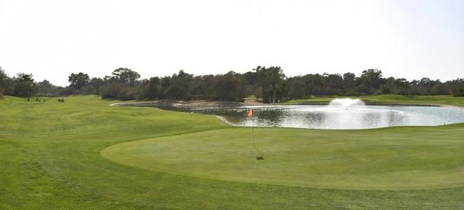Le green bien protégé du golf des dunes.