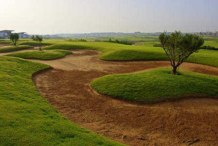 Le bunker et l'arbre du golf de Casa Green.