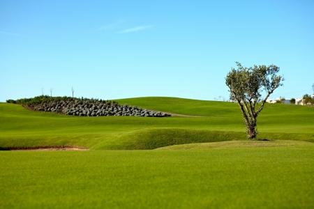 Le bunker et le fairway sur le golf de Casa Green.