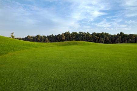 Le fairway et les arbres du golf de Casa Green.