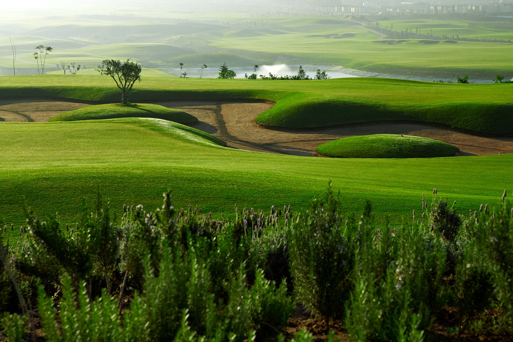 Le fairway et le bunker du golf de Casa Green.