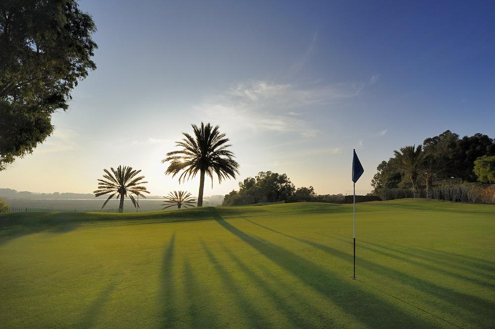 Drapeau et palmiers au golf du soleil