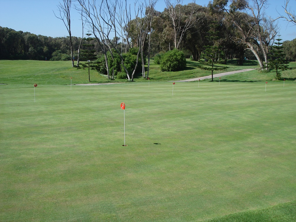 Le putting green du golf d'El Jadida Royal.