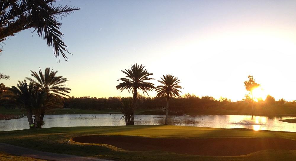 couché du soleil sur les palmiers du golf du soleil