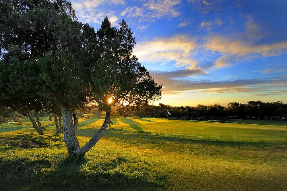 coucher de soleil derrière un arbre sur le golf de Mogador pour notre top 10 des parcours au Maroc